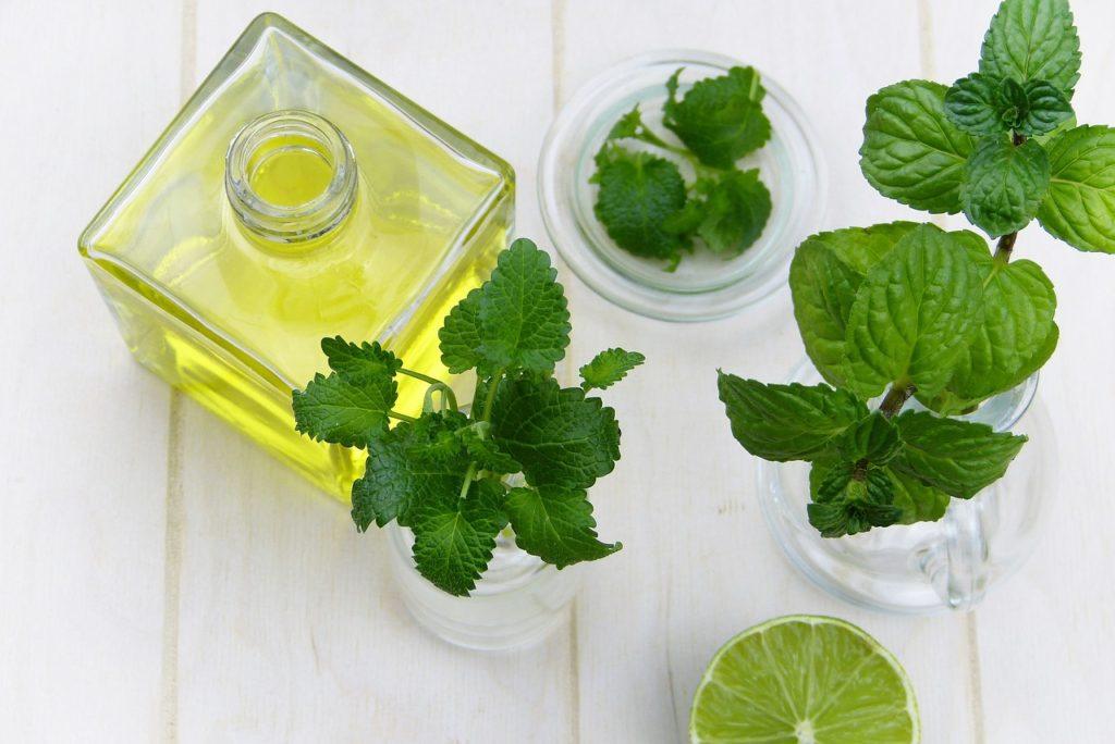 oil leaf 1024x684 - Alternatives To Painkillers After Dental Work